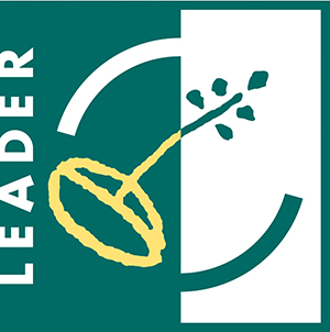 LEADER LOGO web
